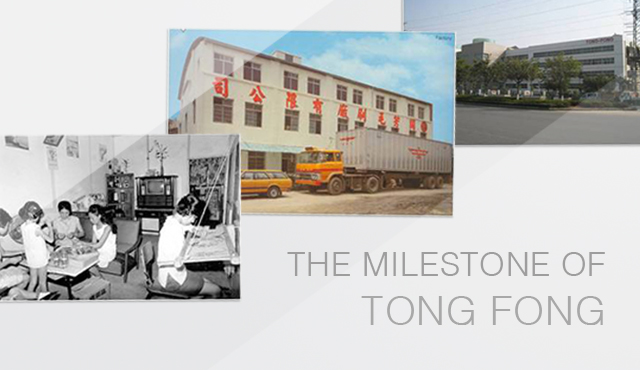 The History of Tong Fong